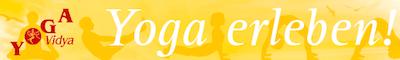 Logo Yoga Vidya
